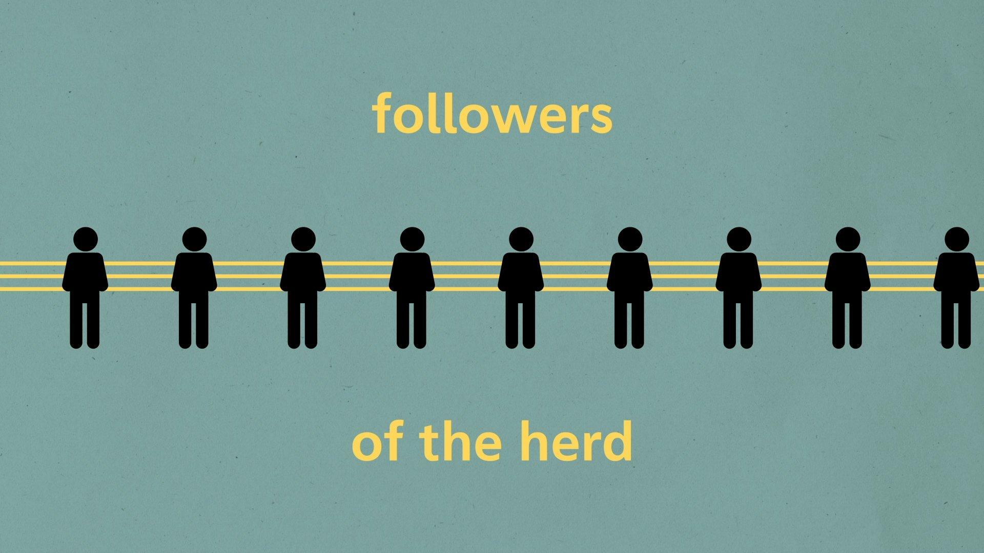 herding_still_9